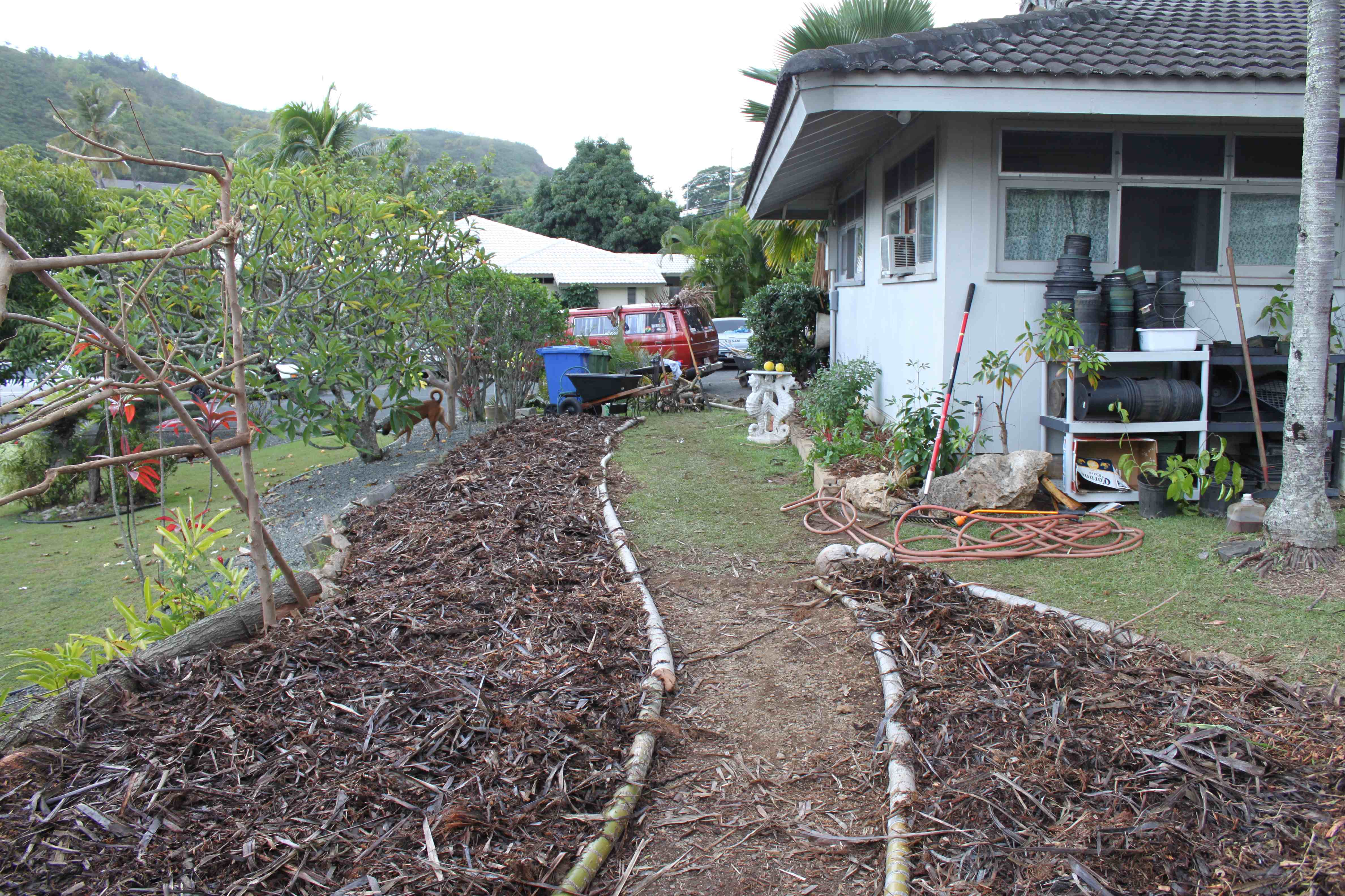 No dig vegetable gardens with raised garden beds - A Chicken Tractor System Will Be Used To Weed Fertilize And Prepare The Garden Beds Chickens Are Let Into Each Area At The End Of The Crop Rotation