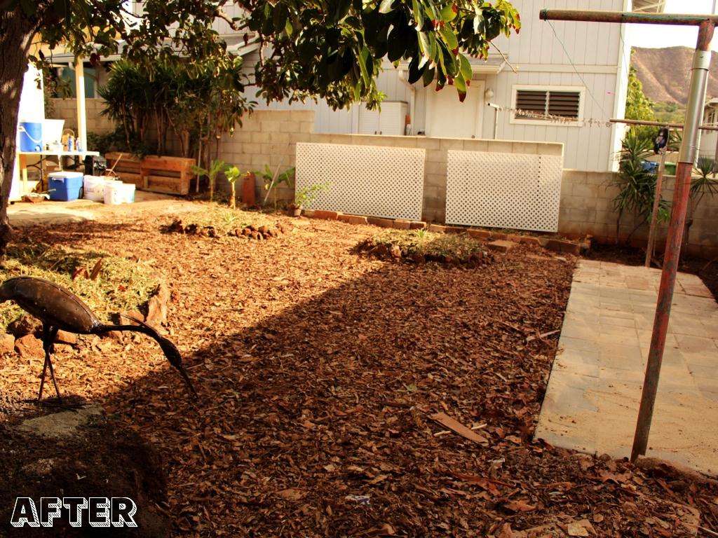 permablitzhi 12 kaimuki backyard transformed permablitz hi