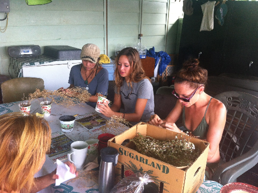 Ladies_seedsharing
