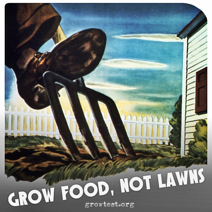 Grow_food_not_lawns