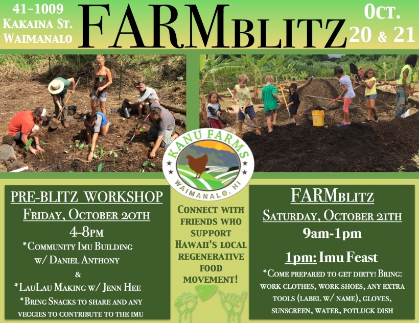 FARMBLITZFLYER
